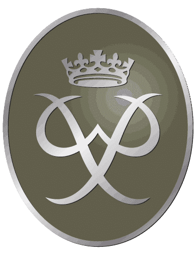 Silver Duke of Edinburgh Medal