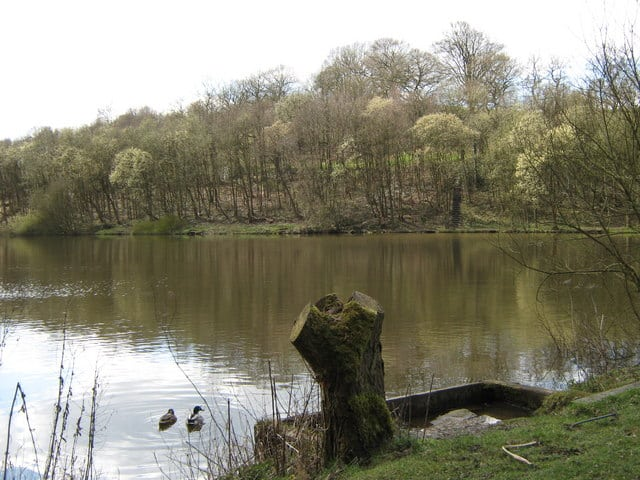 Deep Hayes Country Park